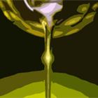 cropped-logo-olio-valorosi.png