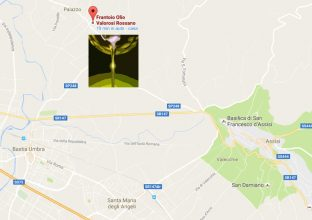 frantoio-olio-oliva-assisi